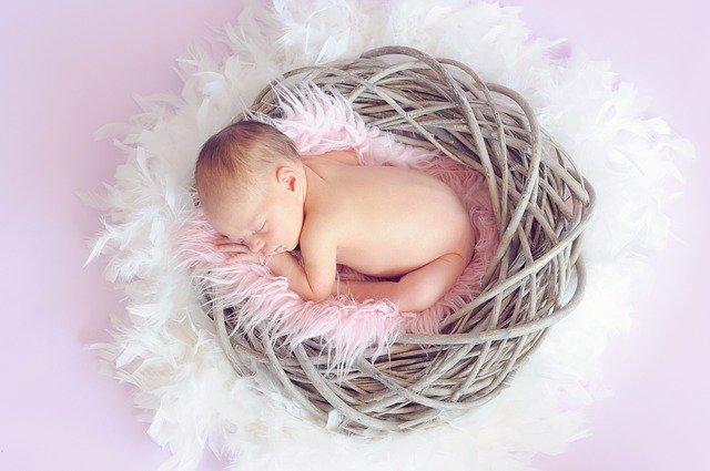 spící holčička v hnízdě.jpg